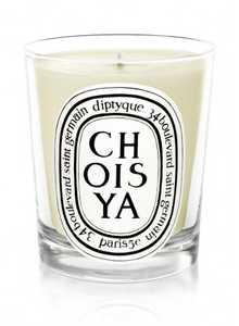 Choisya Candle